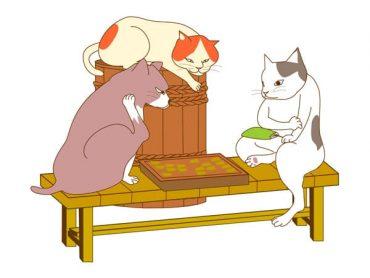 okame-hachimoku